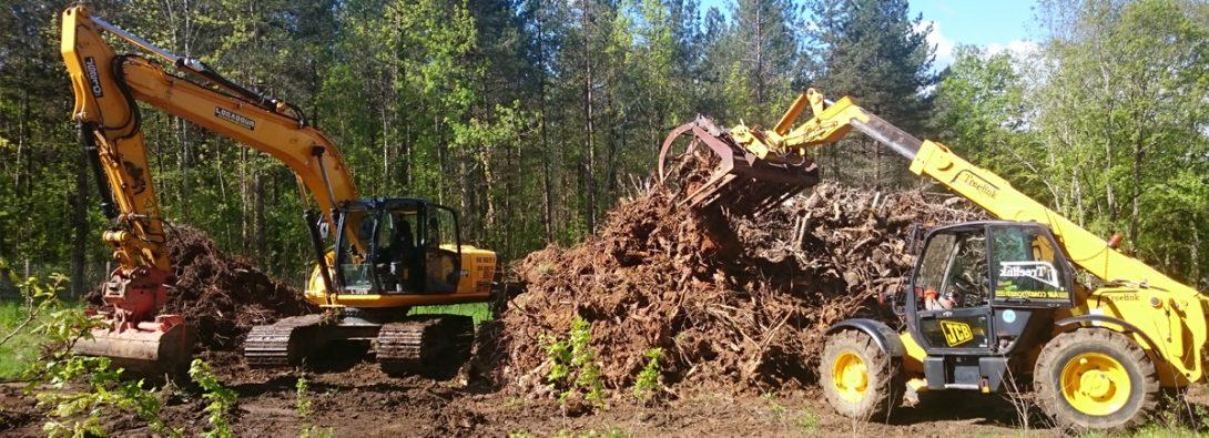 Sainte-Foy-la-Grande Tree Stump Removal