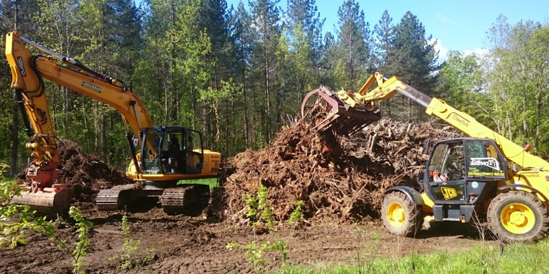 Sainte-Foy-la-Grande Tree Stump Removal